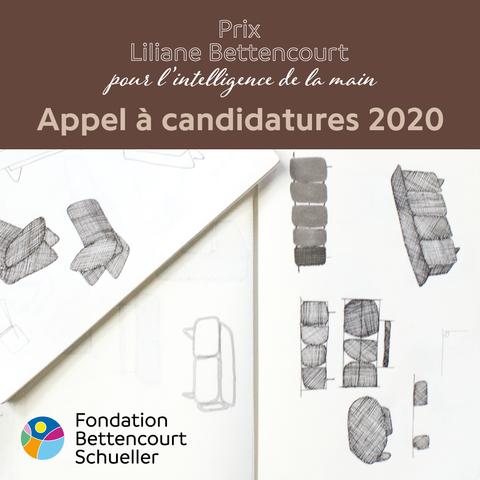 Prix Liliane Bettencourt pour l'intelligence de la main 2020